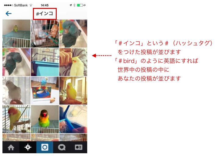 Instagram ハッシュタグ